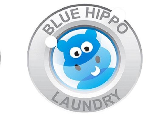 Blue Hippo logo